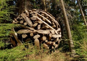 Devil's Glen Sculpture